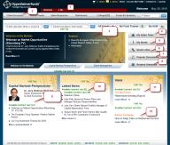 Site portfolio thumbnail